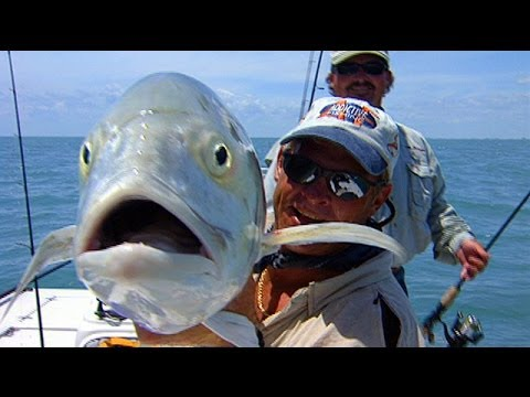 Hour Jacks - EXTREME SALTWATER fishing