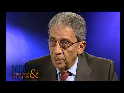 Amr Moussa interview