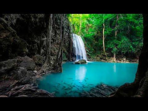 "BIOSFERA ""EL CIELO"" TAMAULIPAS, reserva natural"