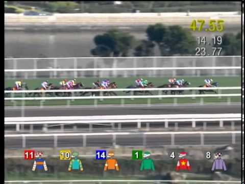 2013 Hong Kong Classic Cup (HK Group 1)