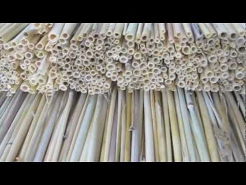 Straw Hive Making