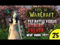 Pets of Warcraft Video 25 - Unborn Val'kyr - The World of Warcraft Battle Pet Vlog