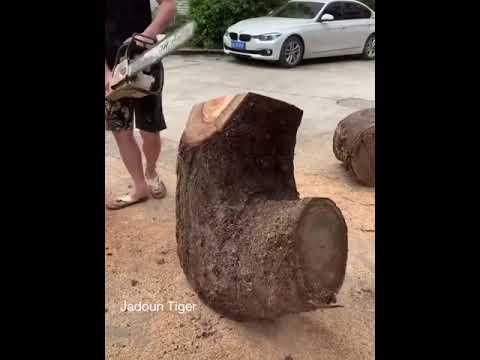 Модыг жинхэнэ урлагийн бүтээл болгож байна аа