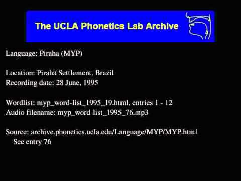Pirahã audio: myp_word-list_1995_76