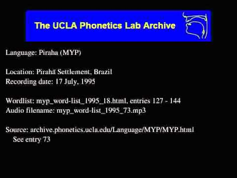 Pirahã audio: myp_word-list_1995_73