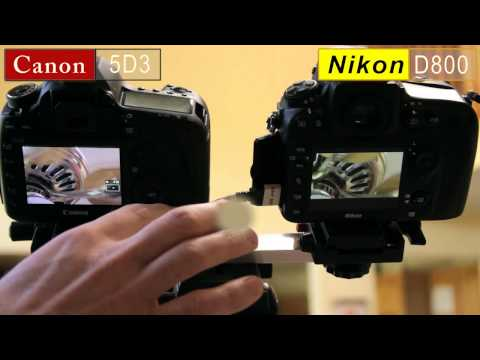 Canon 5D Mark III vs Nikon D800 Zoom Issue