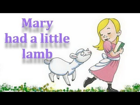 Famous English Nursery Rhymes - Mary Had A Little Lamb - Kids Song Video