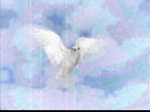 Ofra Haza - My Bird - עפרה חזה - ציפורי