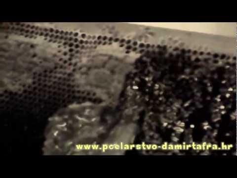 Pčelarstvo Damir Tafra - Vrcanje meda, lipanj 2012
