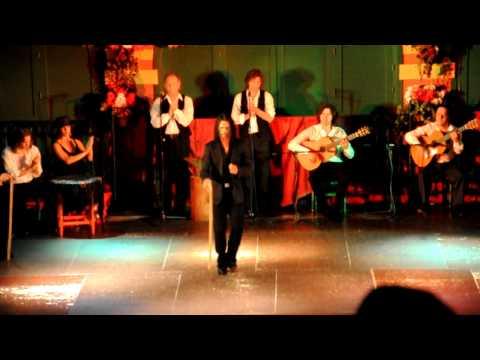 Flamenco Show in Sevilla, Spain Part2 [HD] フラメンコショー(スペイン)