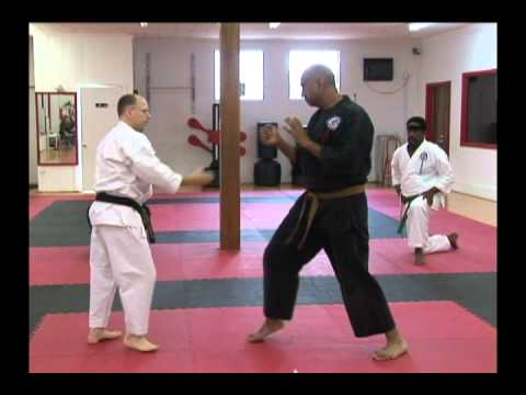Troy J. Price Martial Arts Action Clips #2 Shurite Bujutsu-Kai Workshop Series June-2011 .mp4