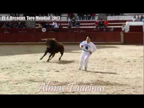 Concurso Recortes IV Toro Mundial  Avance 9-3-2013