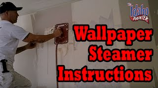 Wallpaper Steamer To Remove Wall Paper
