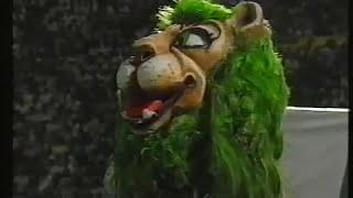Sporting - 0 Benfica - 0 de 1991/1992