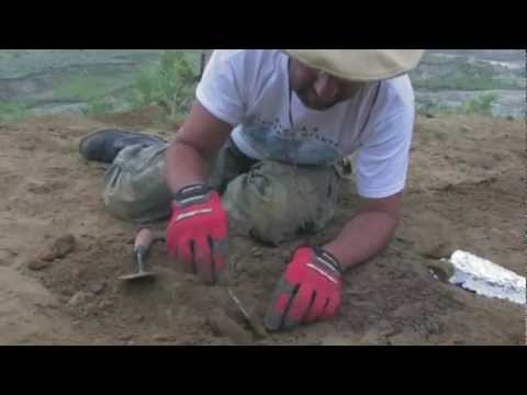 Paleontology: The Real Story -- Documentary