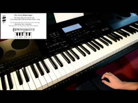 Tự Học Đàn Organ - Bài 4