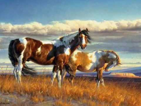 native american indian spirit horses