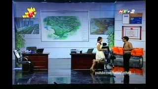Tai tieu tuyet - Tài Tiếu Tuyệt: Ngọc Lan