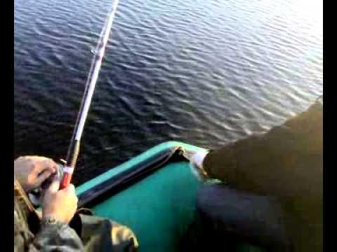 ютуб рыбалка на сома в києві