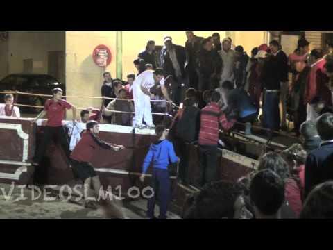 Vaca atrapada en Cadreita