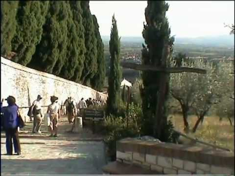 Video Assisi