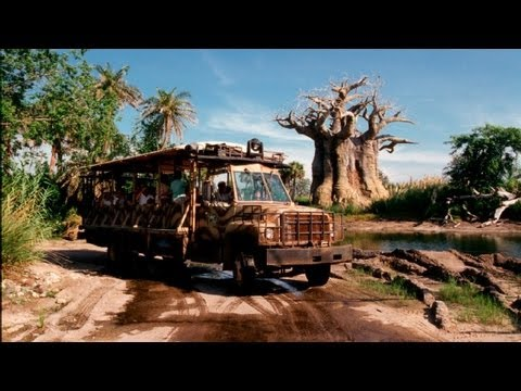 Kilimanjaro Safaris at Disney's Animal Kingdom (in HD)