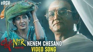 Nenem Chesano Video Song | Lakshmi's NTR Movie Songs