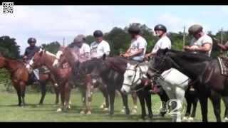 WESH 2 News Horses & Heroes