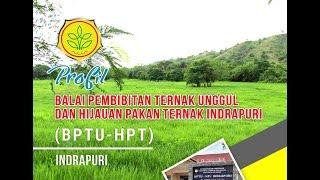 Profile BPTU-HPT Indrapuri