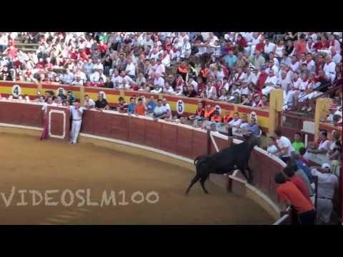 TUDELA vacas plaza 27 julio 2012