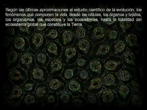 El Proyecto Matriz #123B. MAXIMO SANDIN vs DARWIN. DARWINISMO SOCIAL IV