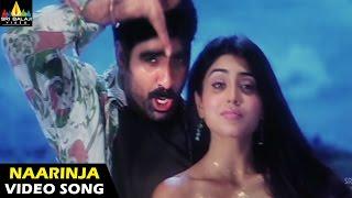 Naarinja Pulupu Video Song | Bhageeratha
