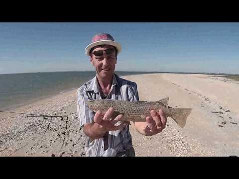 рыбалка на море с берега как ловить кефаль