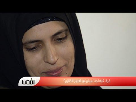 فيديو: غزة.. كيف نجت سماح من انفلونزا الخنازير؟