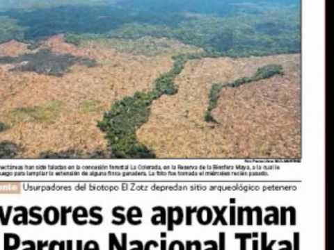 Recuperando la Reserva de la Biosfera Maya: Acciones y no Discursos