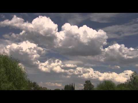 Beautiful Natural Clouds Pass Over Trees Realtime Wide View (4min) V10068