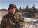 Hunting Pheasant in a Winter Wonderland
