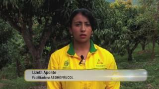 Buenas Prácticas Agrícolas- Manejo y uso Seguro de Plaguicidas en la Producción Agrícola