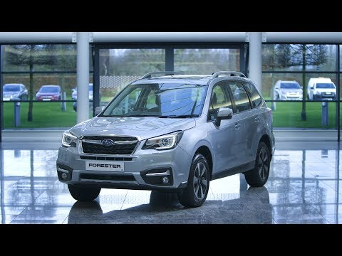 Explore the Forester