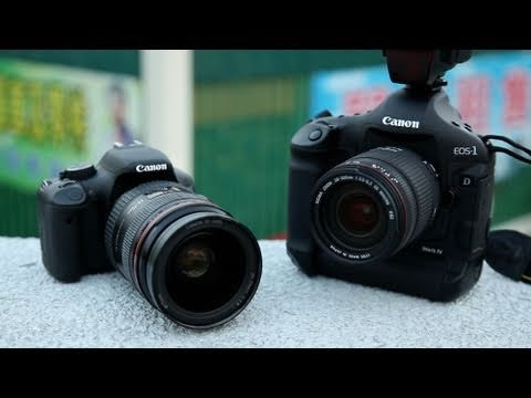 Pro DSLR + Cheapo Lens vs Cheapo DSLR + Pro Lens