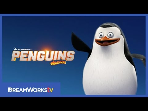 Meet Private | PENGUINS OF MADAGASCAR