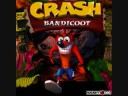 Crash Bandicoot 1 - Hog Wild, Whole Hog Music