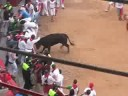Running of the Bulls - El Encierro (July 11, 2008)