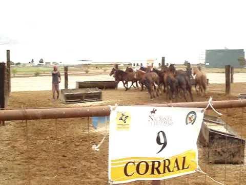 Corral 09