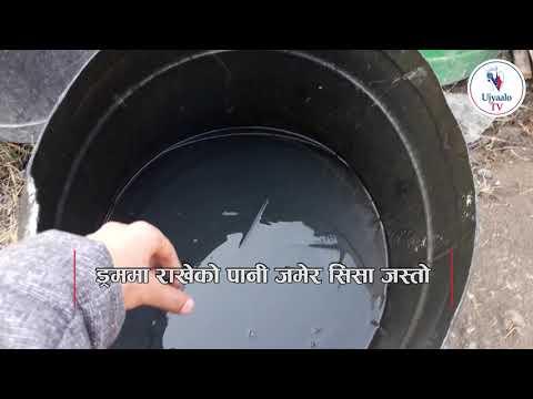 काठमाडौंमै चिसो बढेर यस्तो पानी जमेर सिसा जस्तो