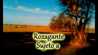Rozagante   lyrics video