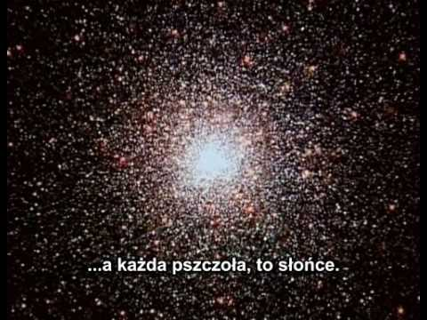 Carl Sagan - Cosmos PL ep 1 part 2