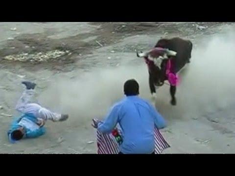 شاهد بالفيديو مصارعة ثيران قاتلة في بيرو