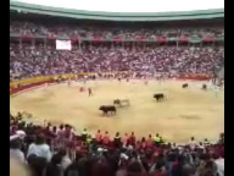San Fermín. 11/07/12 Encierro desde la plaza de toros.