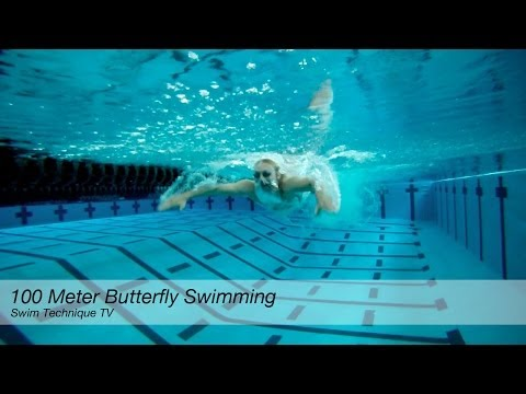 100 Meter Butterfly Swimming Technique